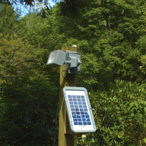 Solar flood lights aloadofball Image collections